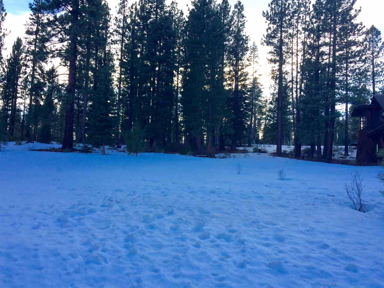 Additional photo for property listing at 10240 Dick Barter  Truckee, California 96161 Estados Unidos