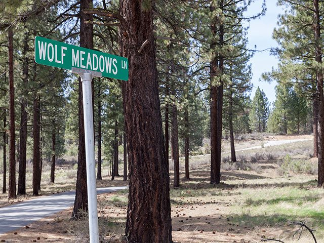 Land for Active at xxxx No Site Address Lake Almanor, California United States