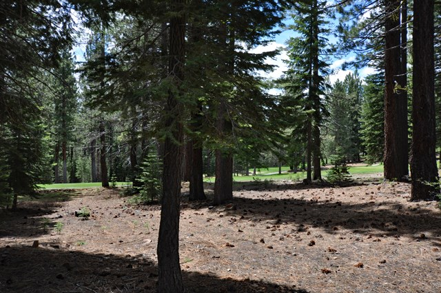 Additional photo for property listing at 13656 Ski View Loop  Truckee, California 96161 United States