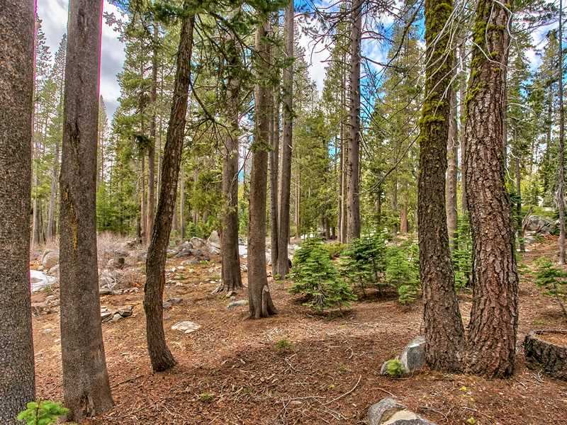 Additional photo for property listing at 21210 Donner Drive  Soda Springs, California 95728 Estados Unidos