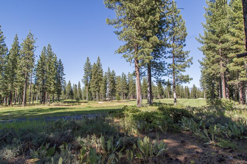Additional photo for property listing at 11174 Donner Pass Road  Truckee, California 96161 United States