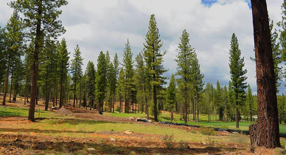 Additional photo for property listing at 7018 Villandry Drive 7018 Villandry Drive Truckee, California 96161 United States