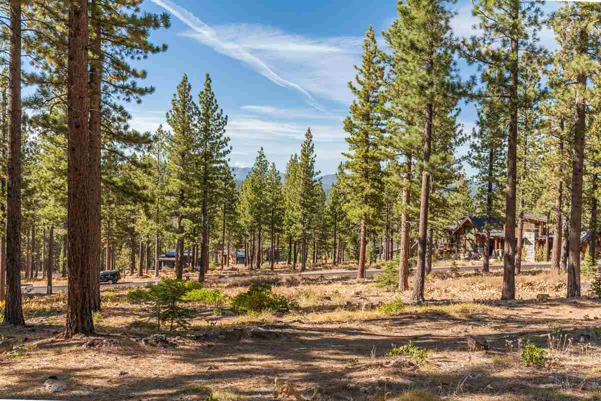Additional photo for property listing at 8178 Fallen Leaf Way 8178 Fallen Leaf Way Truckee, California 96161 Estados Unidos