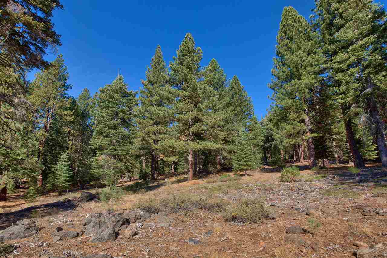 Additional photo for property listing at 11972 Saddleback Drive Truckee, California 96161 United States