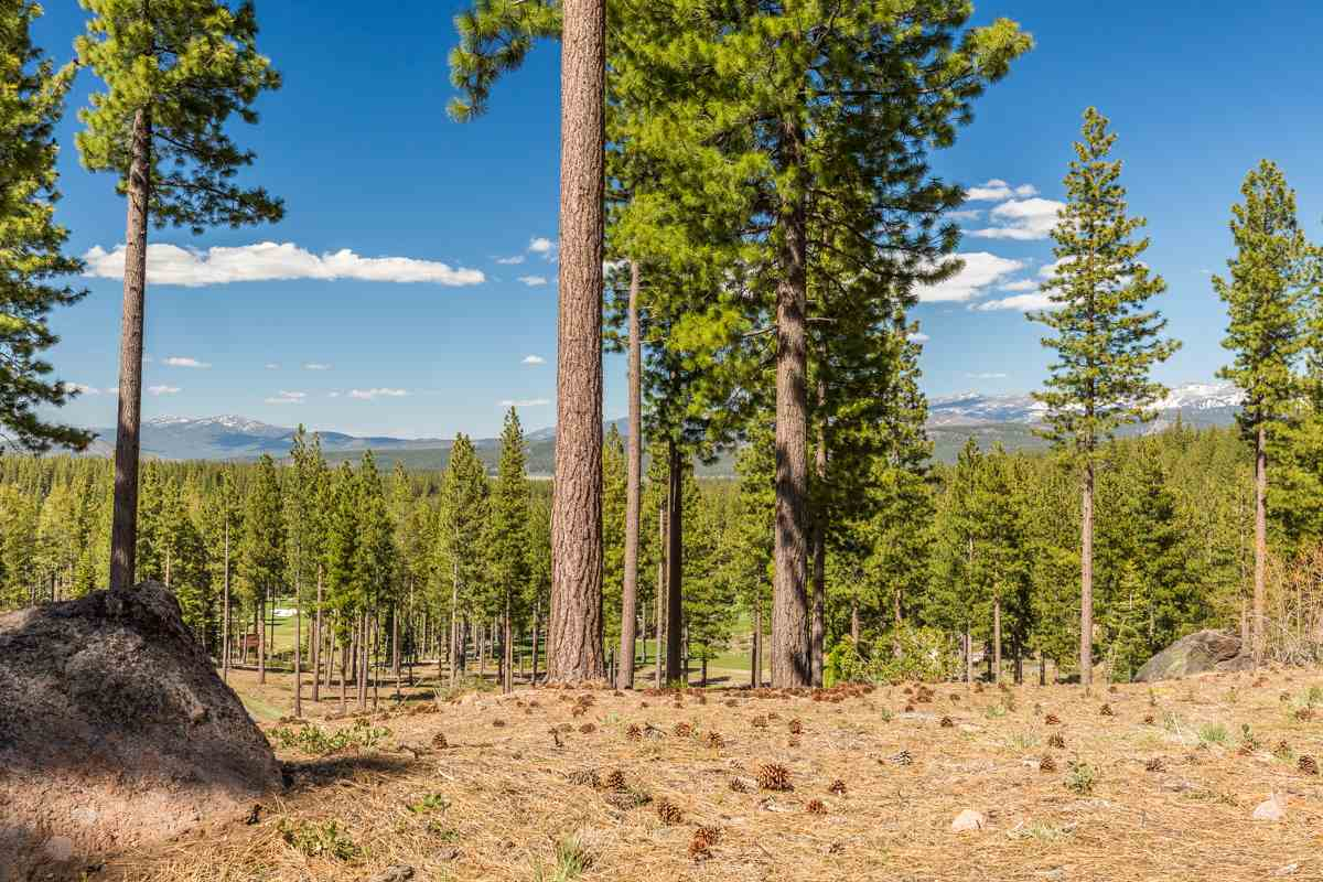 Land for Active at 10286 Hermitage Court Truckee, California United States