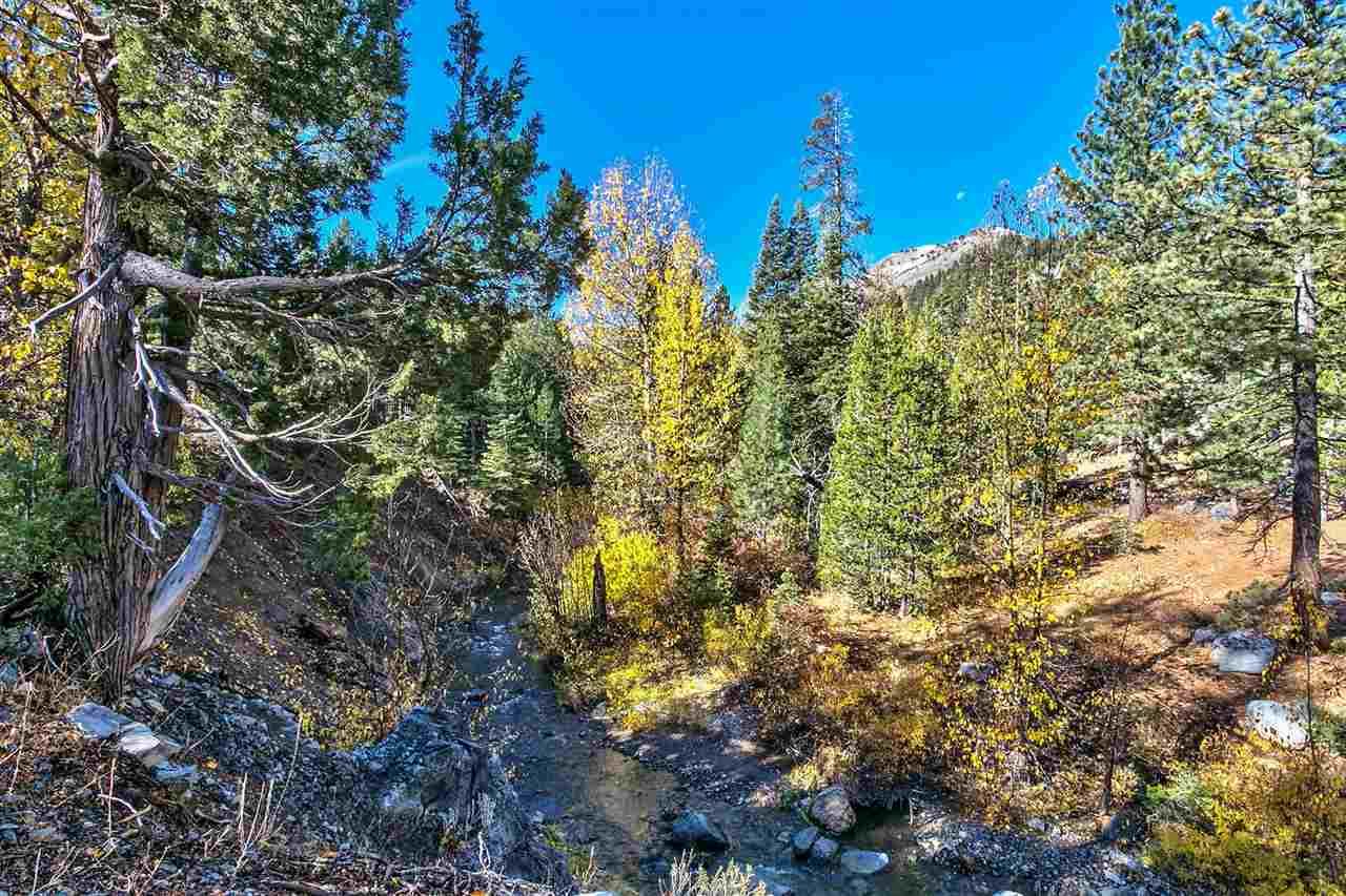 1432 Mineral Springs Trail, Alpine Meadows, CA 96146