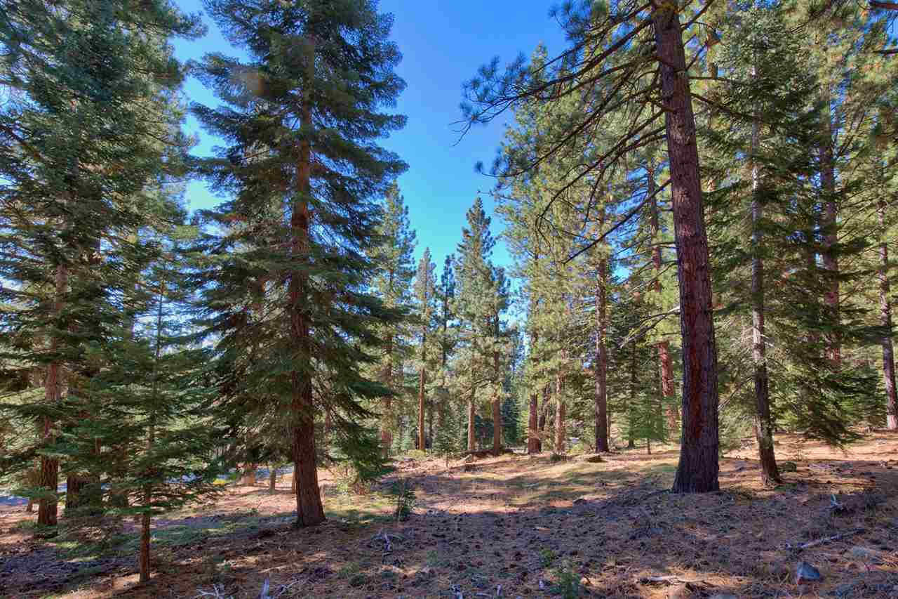 Additional photo for property listing at 11954 Saddleback Drive Truckee, California 96161 United States