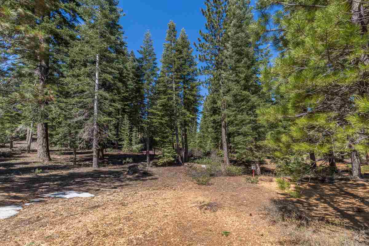 Additional photo for property listing at 8915 Elkhorn Court  Truckee, California 96161 United States