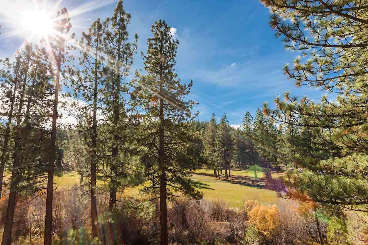 Additional photo for property listing at 353 Skidder Trail  特拉基, 加利福尼亚州 96161 美国