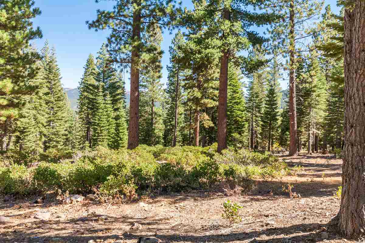 Additional photo for property listing at 10926 Olana Drive  Truckee, California 96161 Estados Unidos