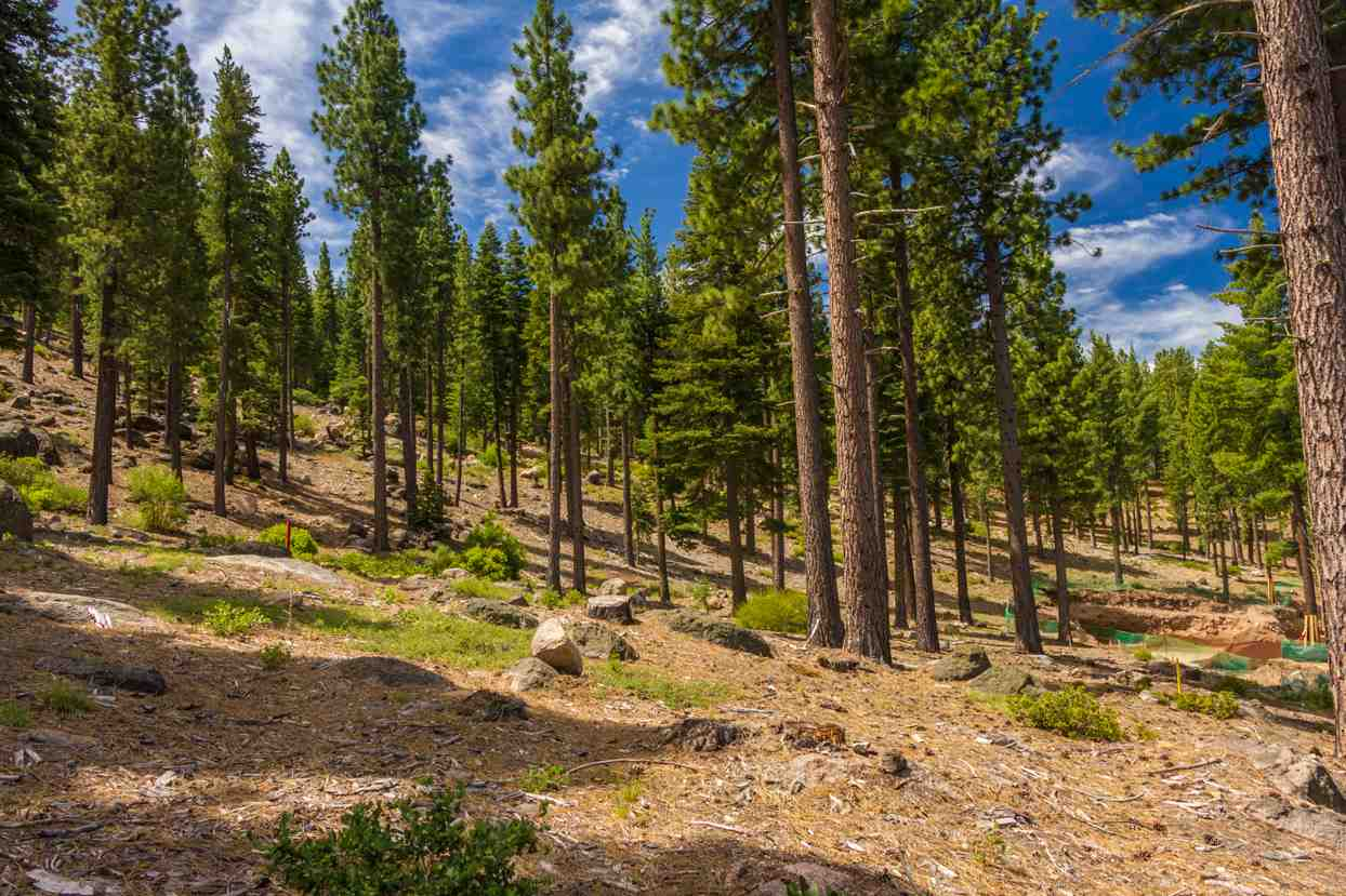 Land for Active at 8124 Fallen Leaf Way 8124 Fallen Leaf Way Truckee, California 96161 United States