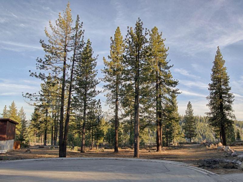 商用 为 销售 在 11211 Trails End 11211 Trails End 特拉基, 加利福尼亚州 96161 美国