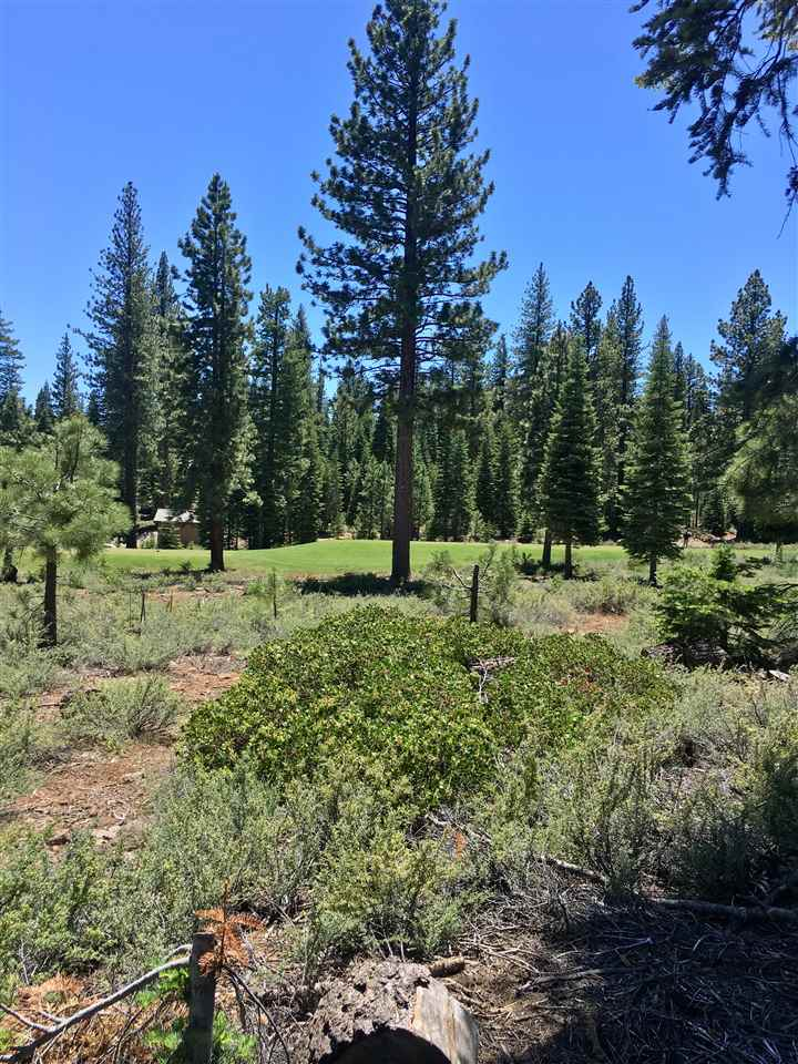 Terreno por un Venta en 373 Nine Bark Road 373 Nine Bark Road Truckee, California 96161 Estados Unidos