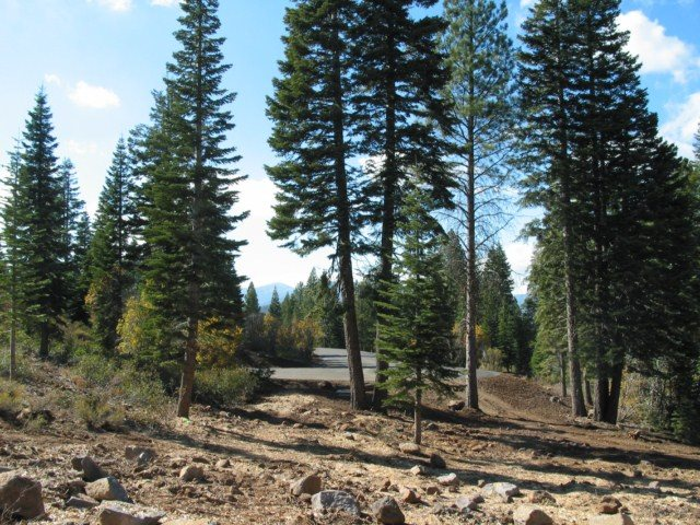 Additional photo for property listing at 10530 Aspenwood Road Truckee, California 96161 United States