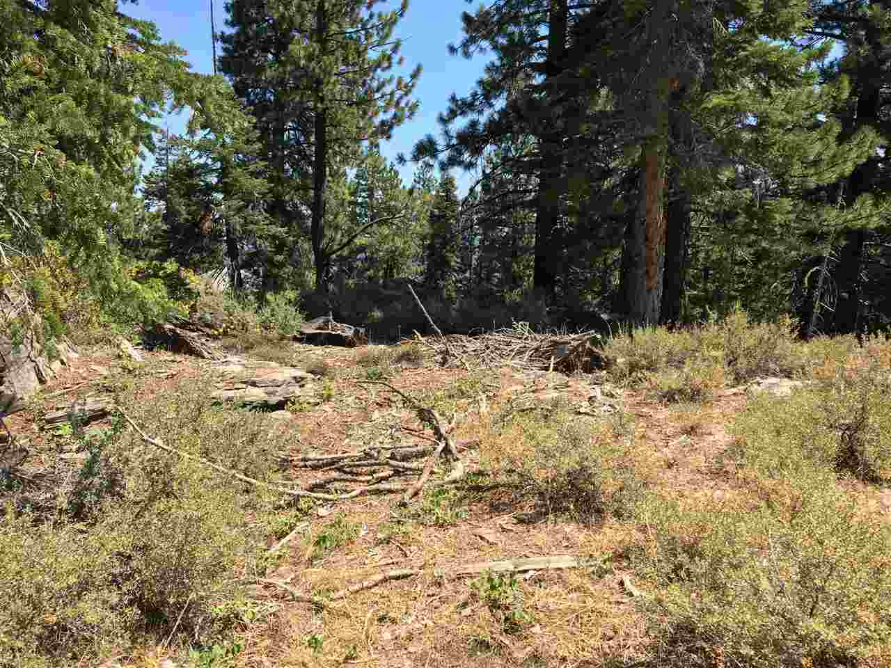 Additional photo for property listing at 10560 Whiskey Jack Court Truckee, California 96161 United States