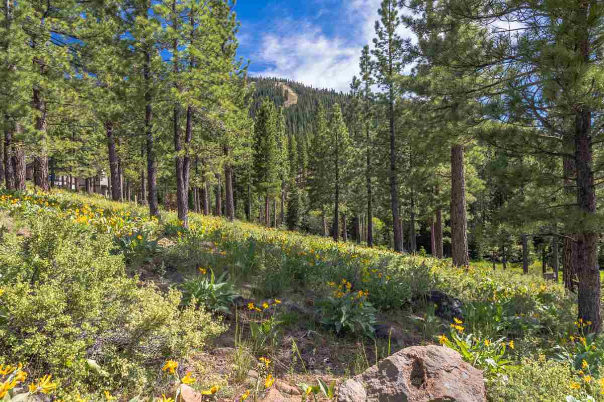 Land for Active at 9619 Ahwahnee Place 9619 Ahwahnee Place Truckee, California 96161 United States