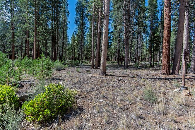 Additional photo for property listing at 11640 Ghirard Road Truckee, California 96161 United States