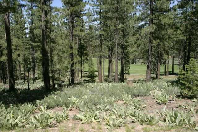Residential Lot for Active at 7735 Lahontan Drive 7735 Lahontan Drive Truckee, California 96161 United States