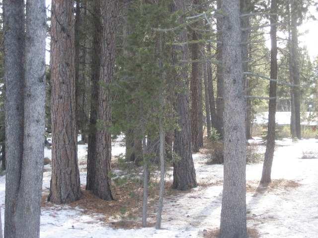 Additional photo for property listing at 10455 Alder Creek Road 10455 Alder Creek Road Truckee, California 96161 Estados Unidos