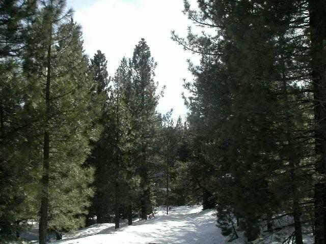 住宅地段 为 销售 在 11969 Kitzbuhel Road 11969 Kitzbuhel Road 特拉基, 加利福尼亚州 96161 美国