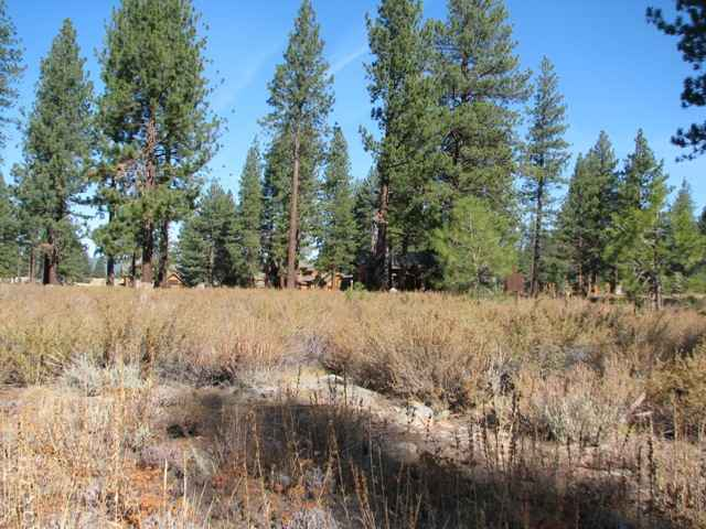 Additional photo for property listing at 12360 Caleb Drive Truckee, California 96161 United States