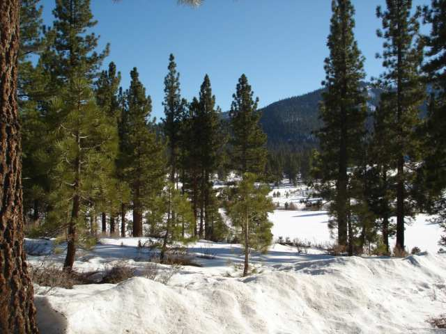 Additional photo for property listing at 7601 Lahontan Drive 7601 Lahontan Drive Truckee, California 96161 United States