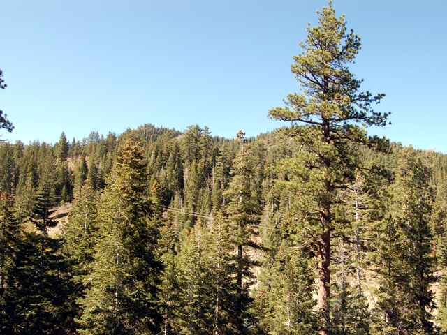 Additional photo for property listing at 1238 Mineral Springs Trail 1238 Mineral Springs Trail Alpine Meadows, California 96145 Estados Unidos