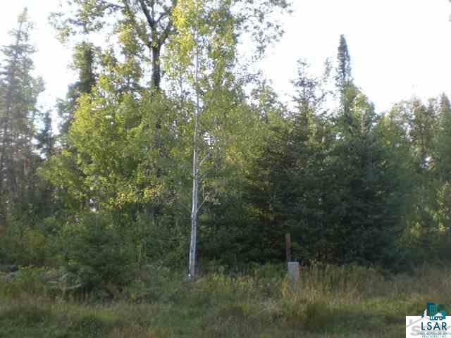 88815 Thunder Bay Rd Lot 7