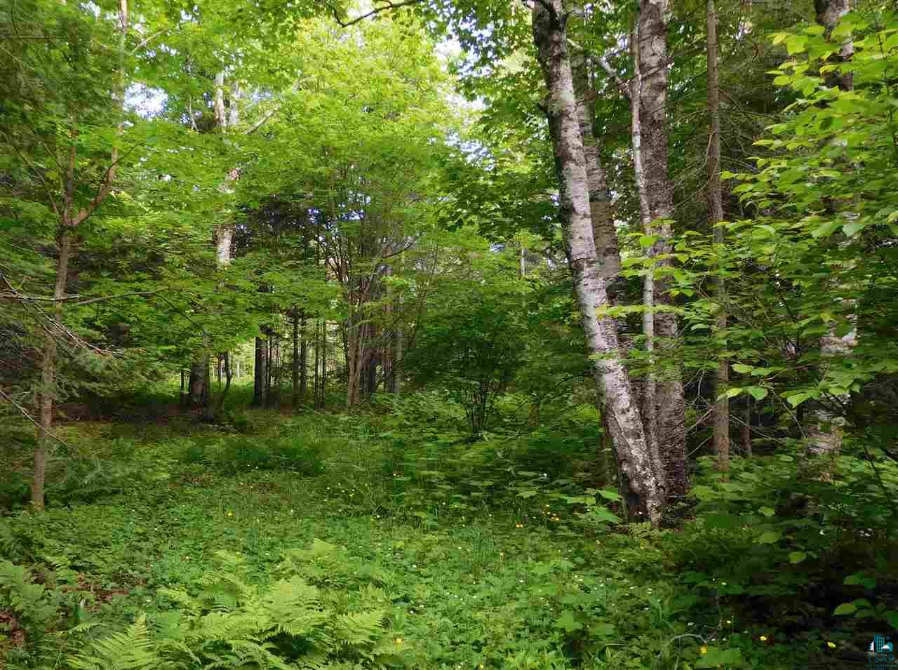 89XXX Lot 4 Bark Point Rd Lot 4