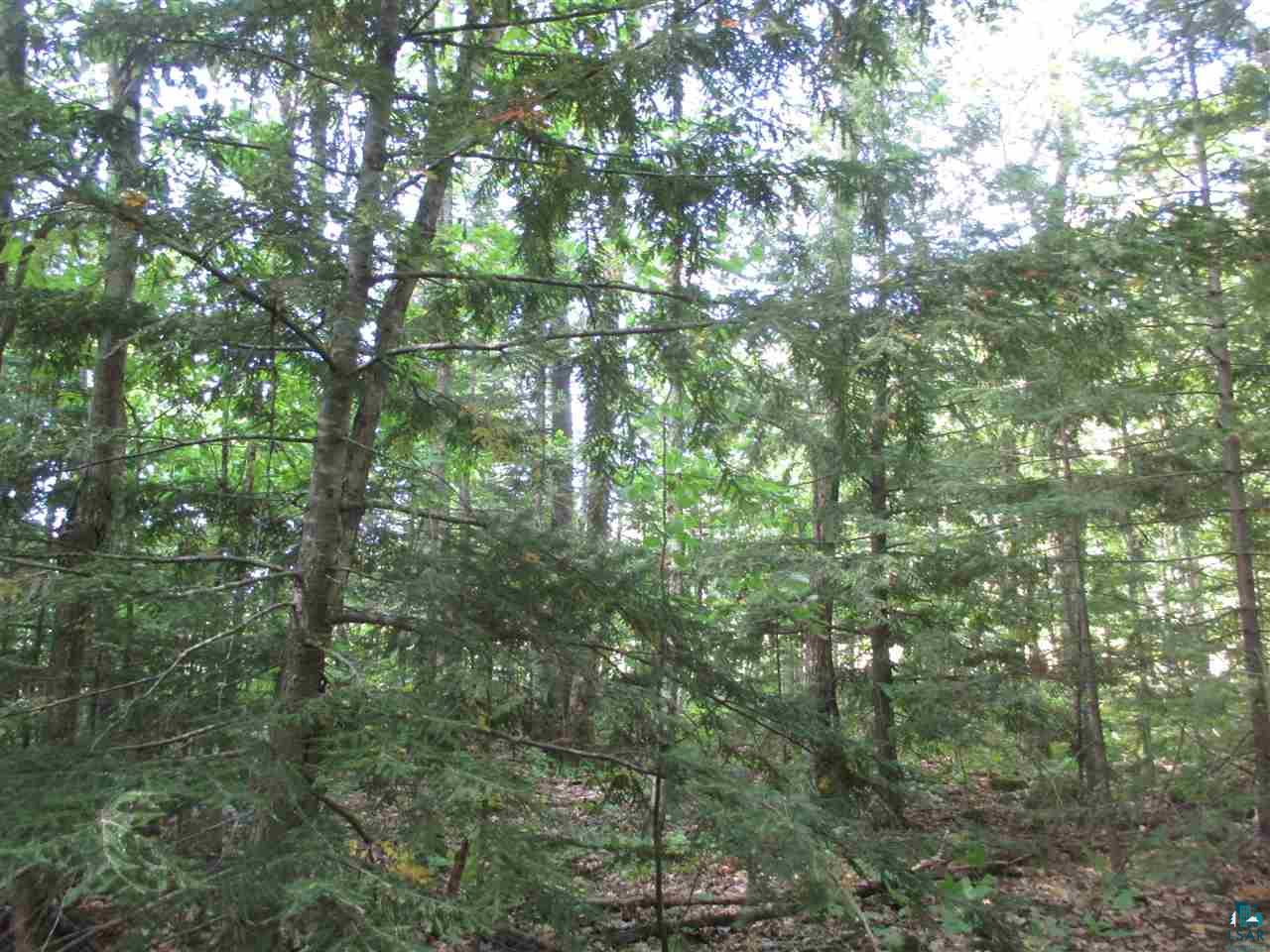 Lot 12 Hidden View Ln