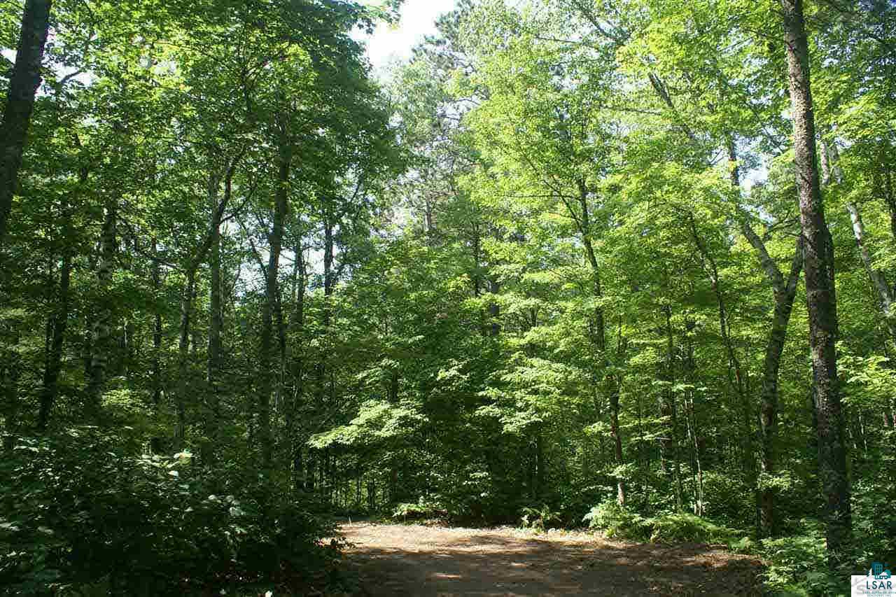 Lot #6 Allison Ln Allison's Acres