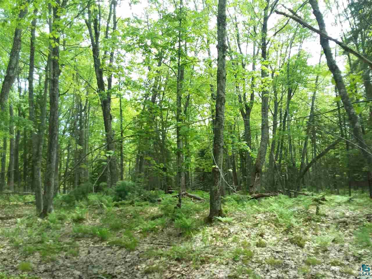 000 Red Oak Ln Lot 5