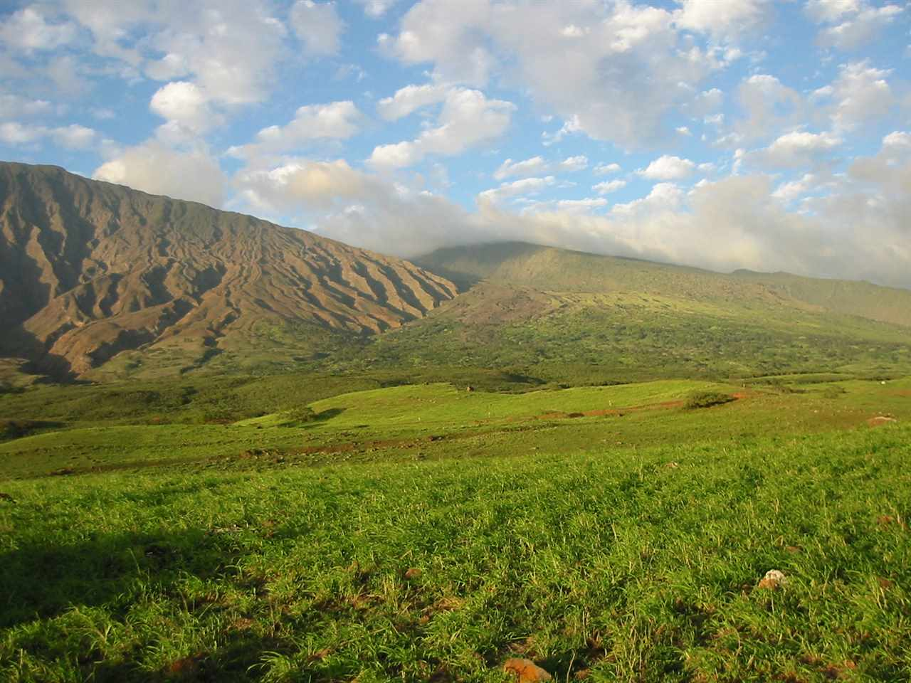 Naholoku, Kaupo. over 3,000 acres of active ranch lands bounded mauka side by Haleakala National Park and makai side by Piilani Highway. Inclusive of infrastructure and improvements. Trophy big game hunting and modest equestrian facilities. Special wilderness.