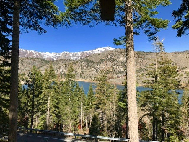 25 Chipmunk Lane Lane, June Lake, CA 93529