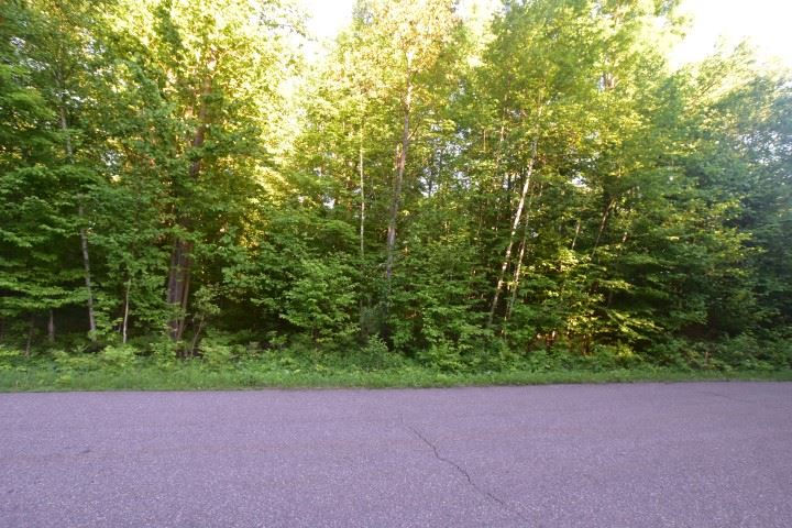 REAGAN Road,LAKEWOOD,Wisconsin 54138,Vacant land,REAGAN,50019726