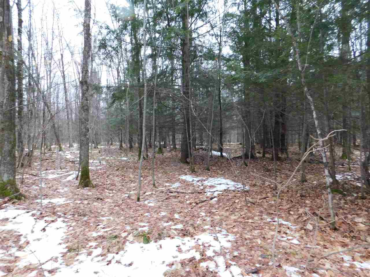 BUETTNER Road,WHITE LAKE,Wisconsin 54491-9587,Vacant land,BUETTNER,50195500