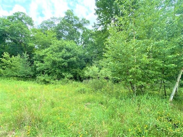 996 Thomas Trail, Waupaca, WI 54981