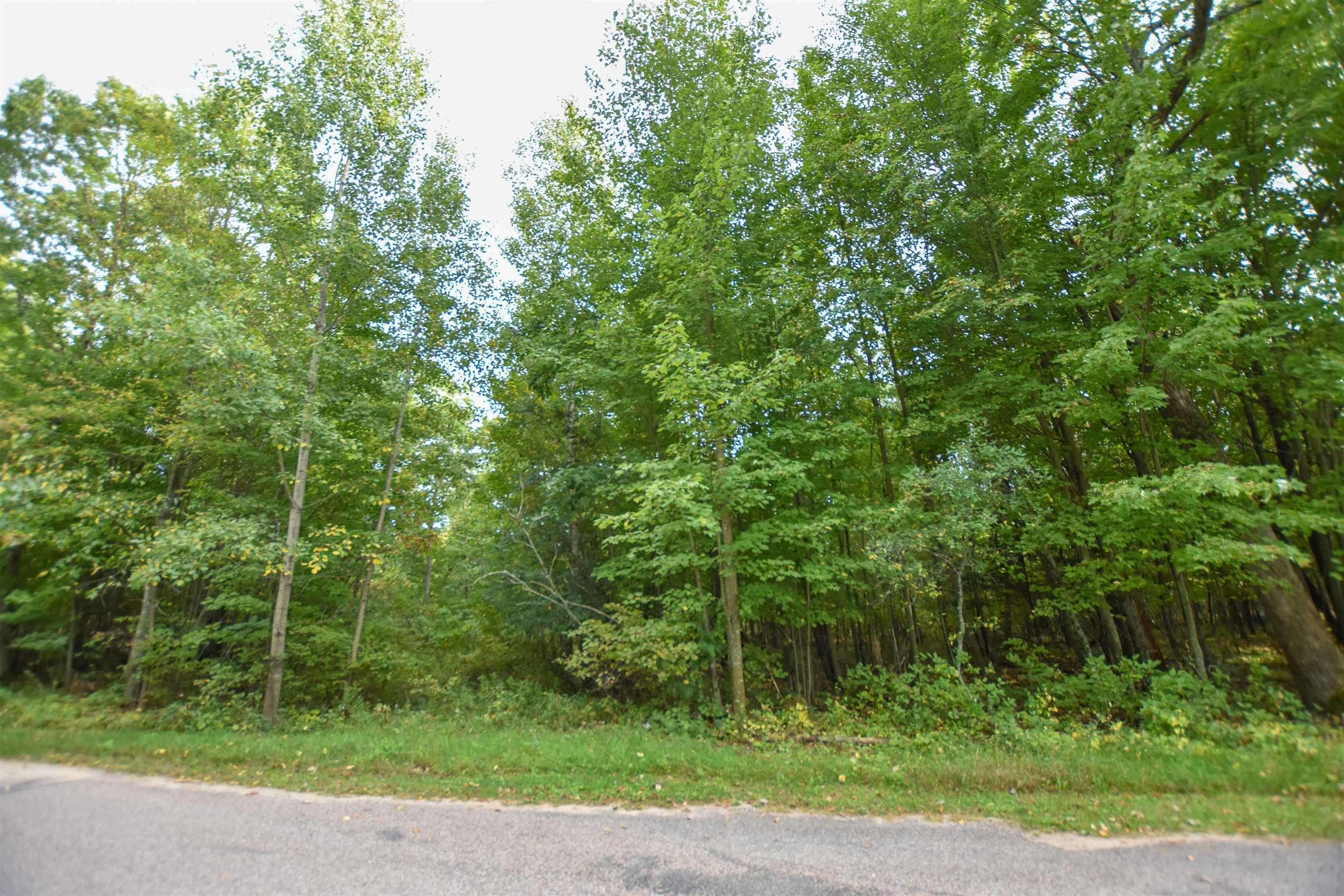 S Long Lake Road, Wild Rose, WI 54984