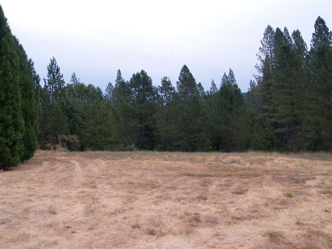 Additional photo for property listing at 11945 Rocker Road Nevada City, California 95959 Estados Unidos