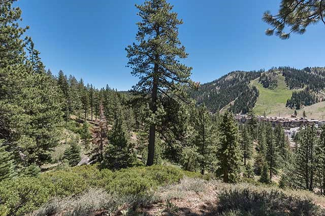 Additional photo for property listing at Upper Washoe Drive Upper Washoe Drive Olympic Valley, California 96146 Estados Unidos