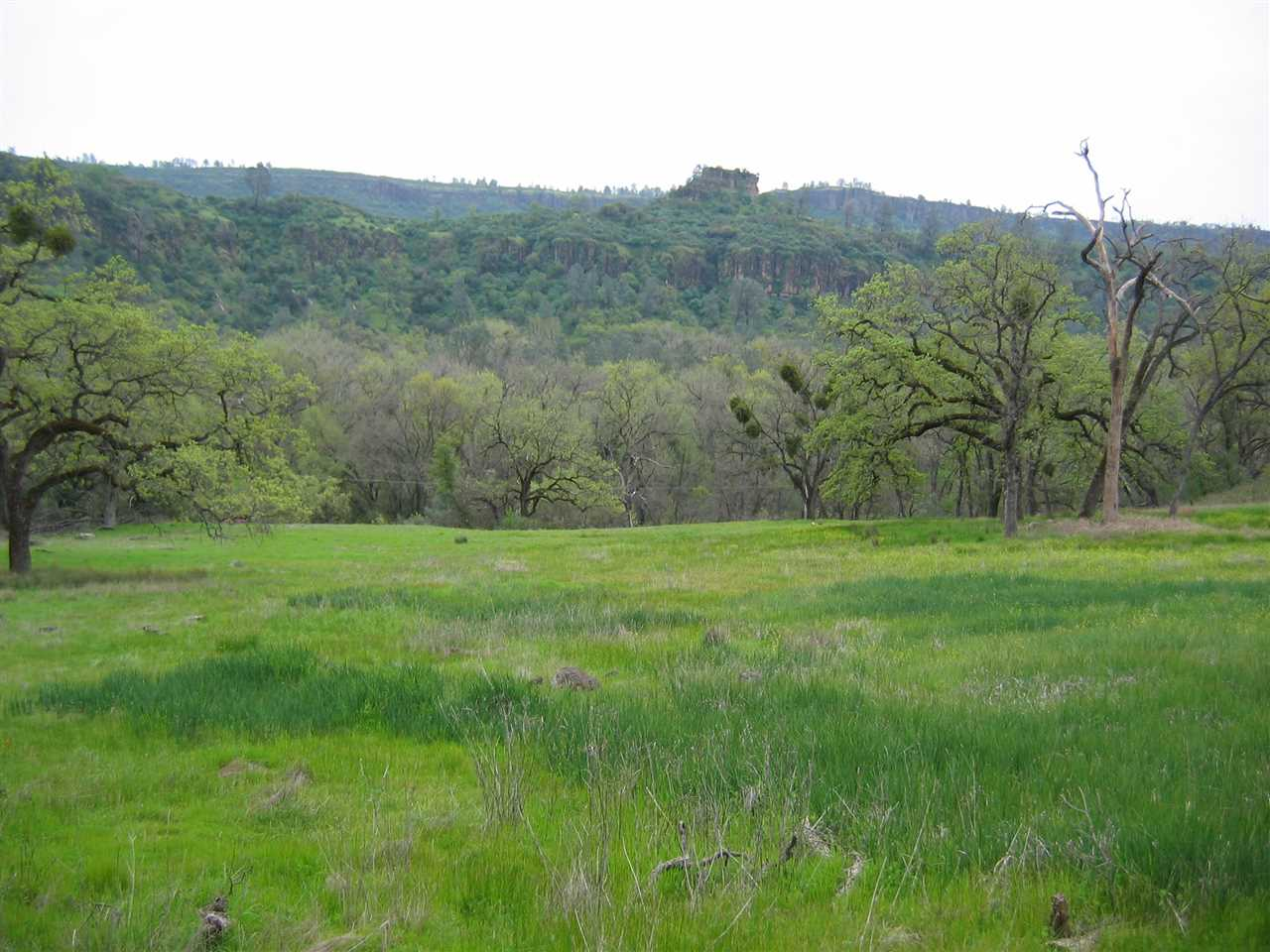 Land for Active at Centerville Road Chico, California 95928 United States
