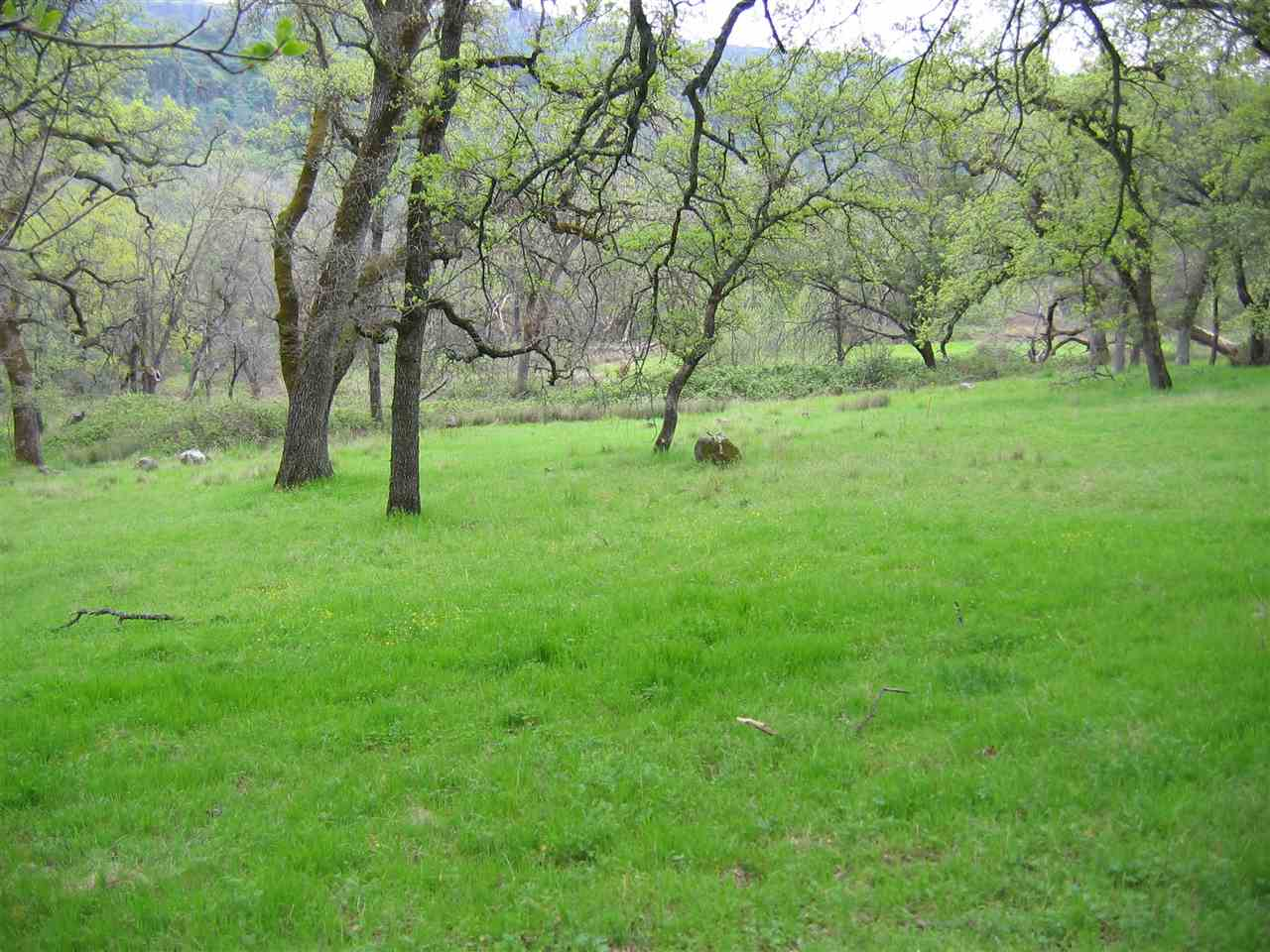Additional photo for property listing at Centerville Road Chico, California 95928 United States