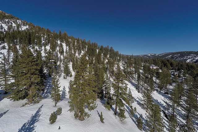 Land for Active at Lower Washoe Drive Lower Washoe Drive Olympic Valley, California 96146 United States