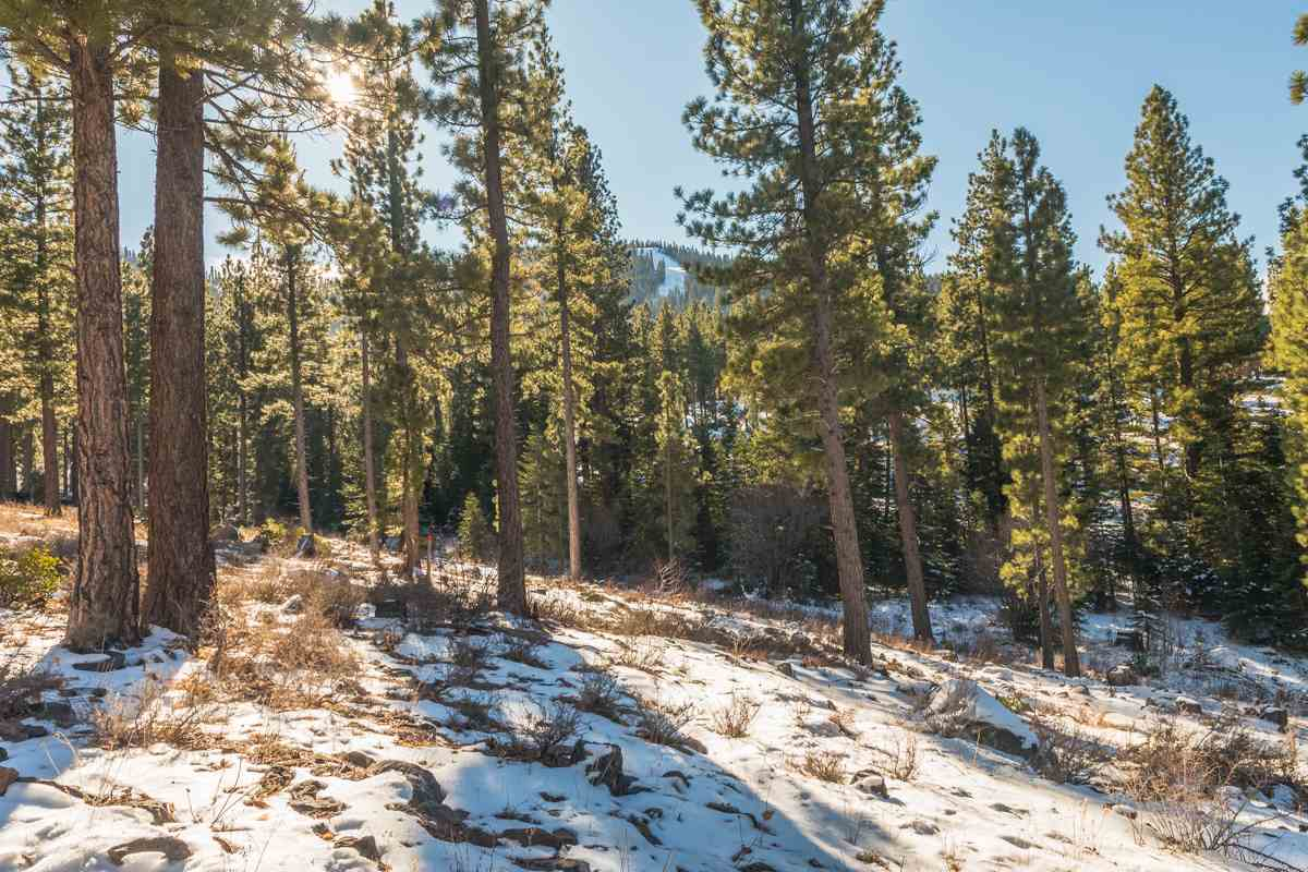 Additional photo for property listing at 9619 Ahwahnee Place 9619 Ahwahnee Place Truckee, California 96161 United States