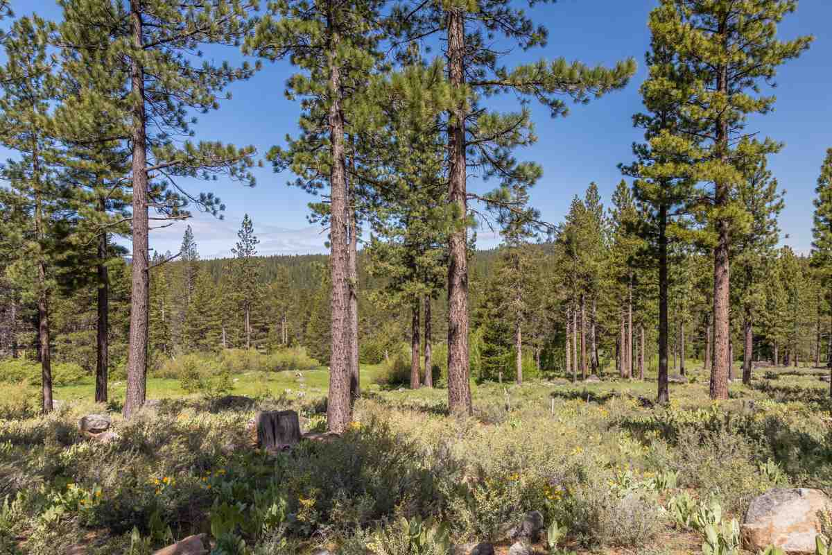 Land for Active at 8167 Villandry Drive 8167 Villandry Drive Truckee, California 96161 United States