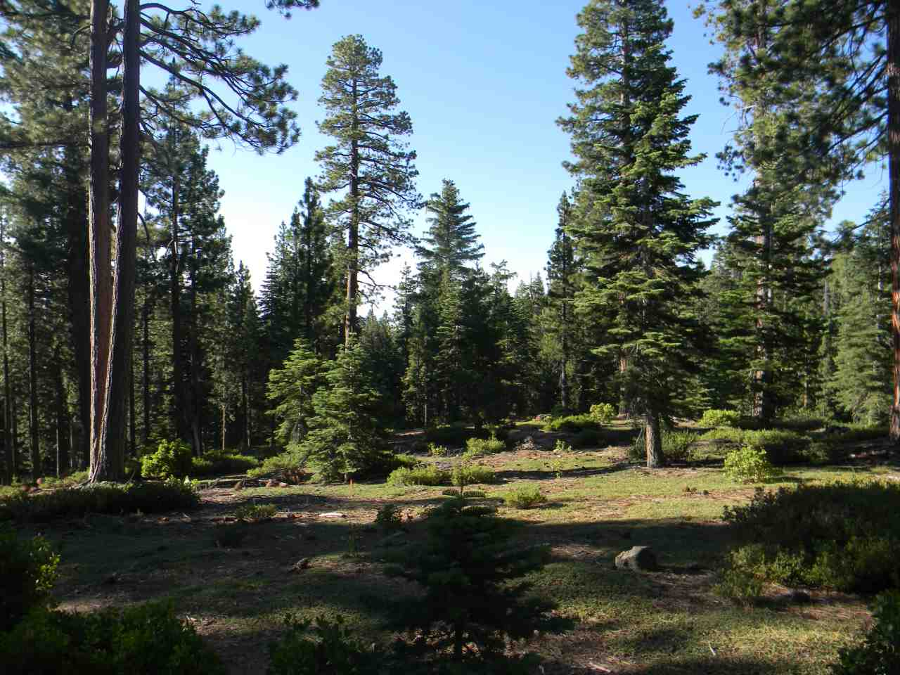 Land for Active at Carnelian Bay, California United States