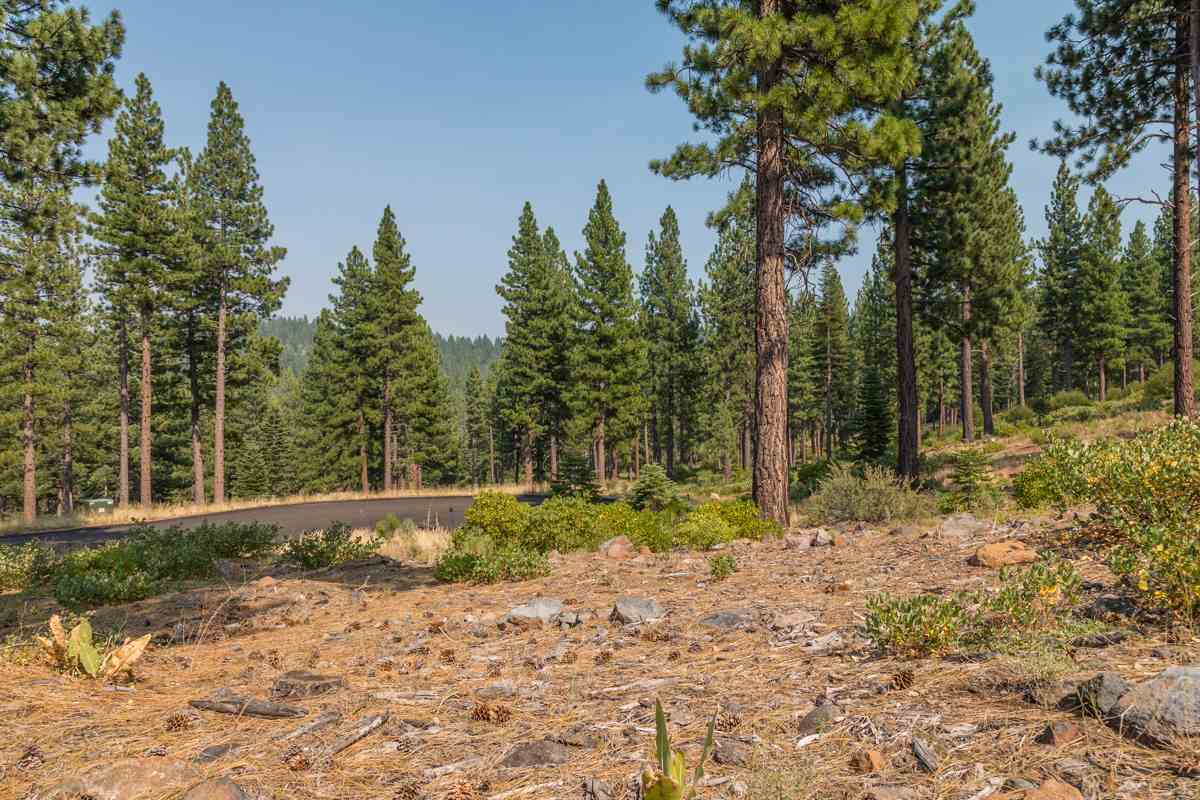 Additional photo for property listing at 2412 Newhall Court Truckee, California 96161 Estados Unidos