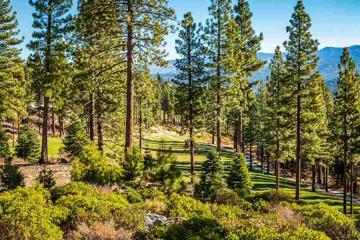 Additional photo for property listing at 8155 Valhalla Drive 8155 Valhalla Drive Truckee, California 96161 United States