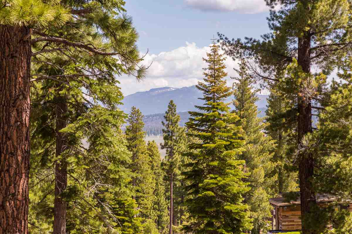 Land for Active at 9513 Wawona Court Truckee, California 96161 United States