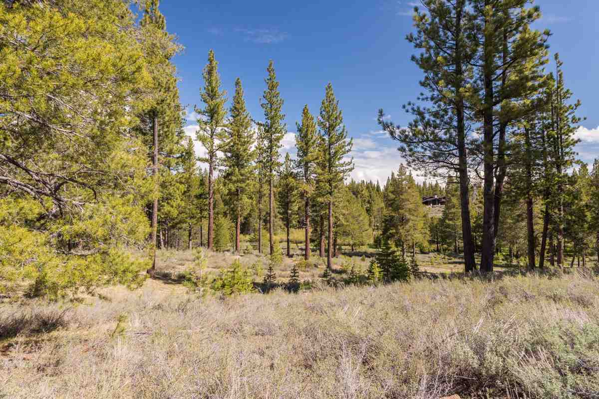Additional photo for property listing at 8125 Villandry Drive Truckee, California 96161 Estados Unidos